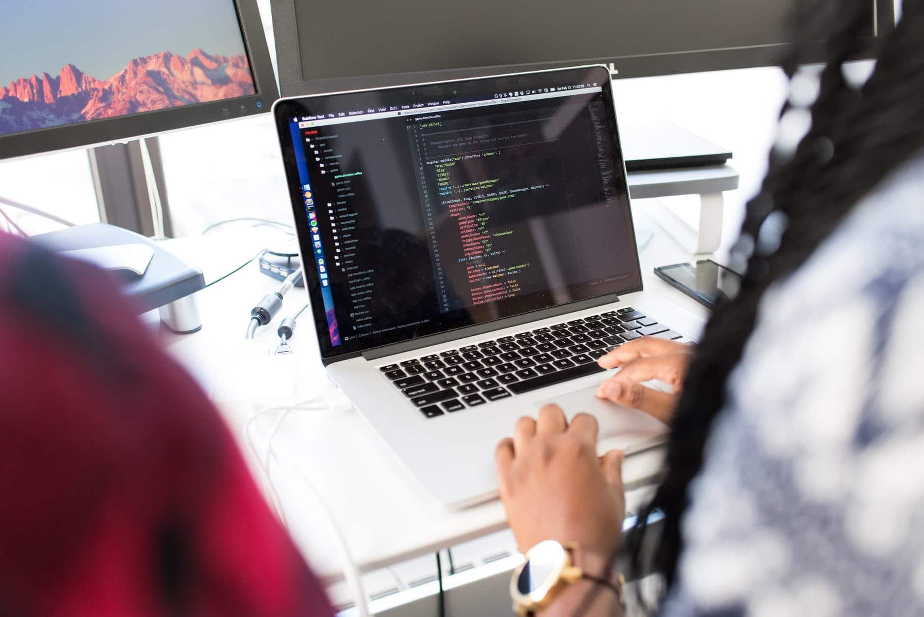 software net developer